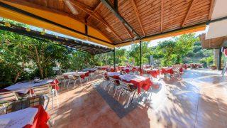 taverna psaropoula – lemon tree garden zante zakynthos