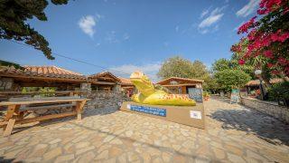 zakynthos sea turtle rescue & information centre zante zakynthos