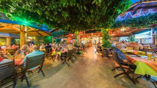 olive tree restaurant zante zakynthos