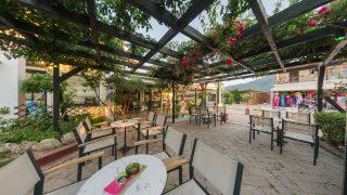 the terrace coffee shop zante zakynthos