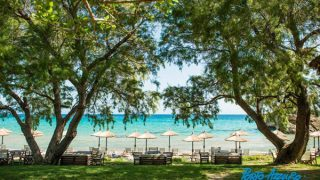 porto azzuro beach bar zante zakynthos